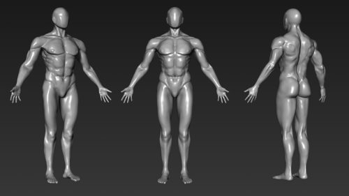 ZBrush Character and Anatomy Course – Beginners to advanced users